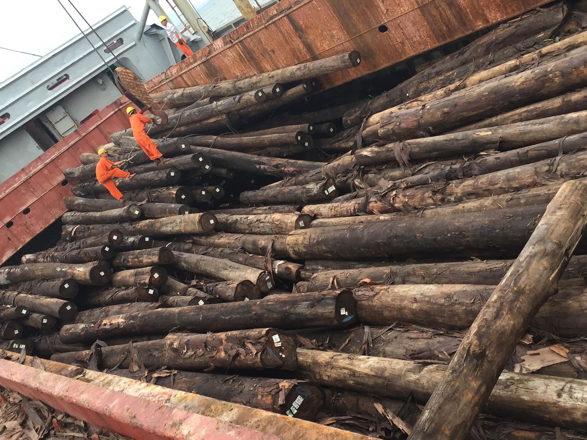 Dỡ gỗ tròn khỏi tàu